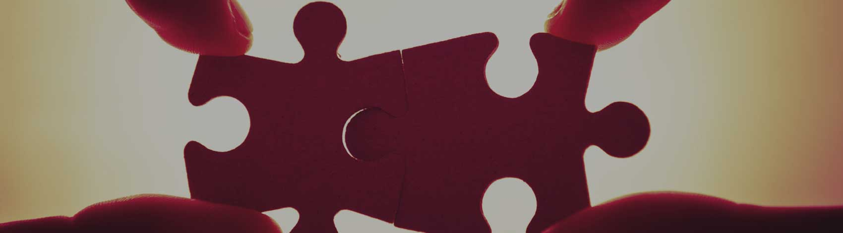 puzzle pieces - Brass Tacks Recovery - Intervention and Family Support Services